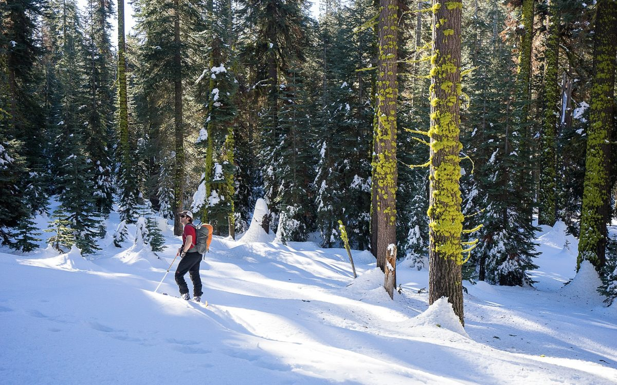 Snow Play | Sequoia Backcountry Skiing