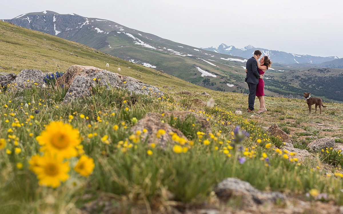 Mt Evans Wildflower Engagement Photodate | Courtney and Justin