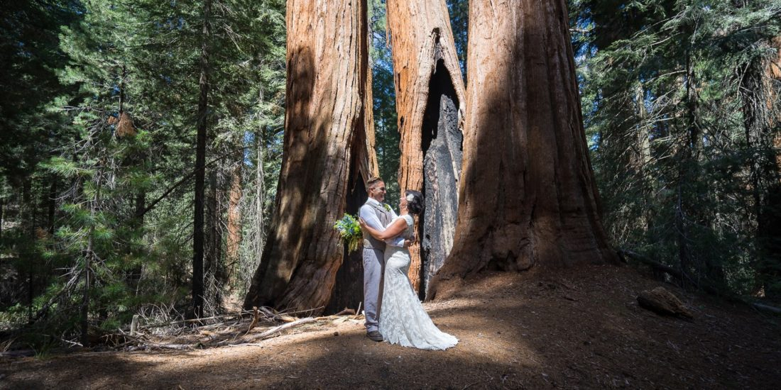 Of Being Right At The Base Sierras A Perfect Place To Exchange Wedding Vows We Love Showing Up Somewhere Beautiful Like Sequoia National Park