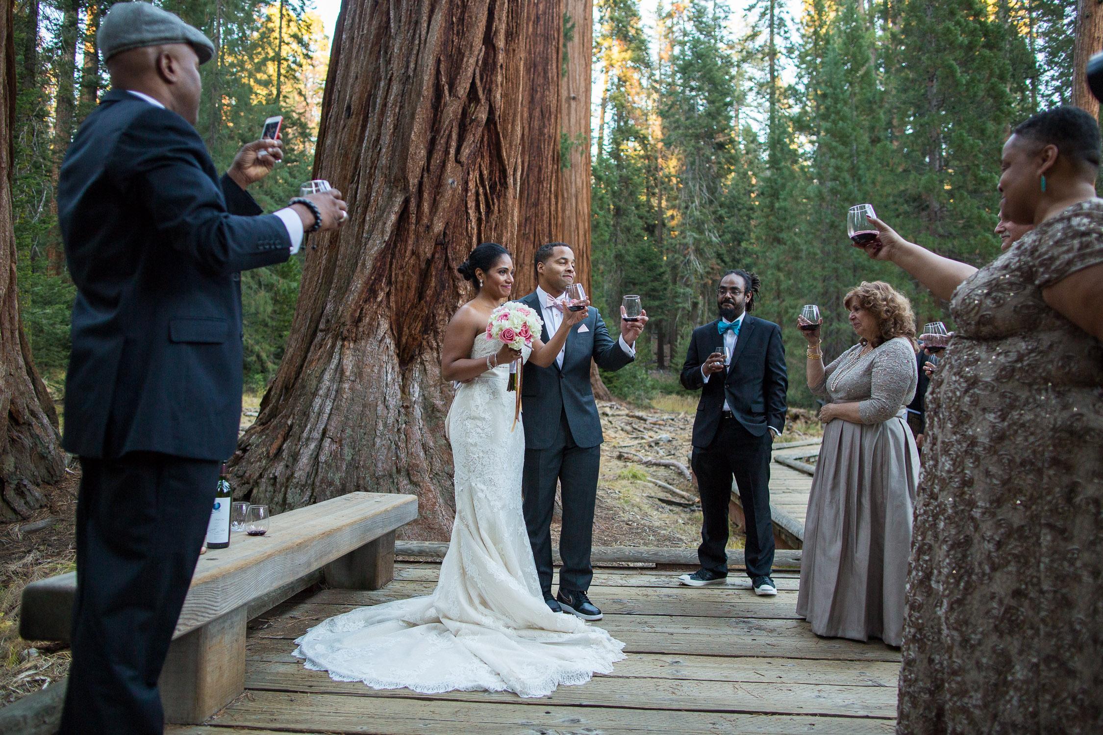 Sequoia National Park Wedding